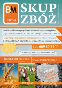 BM Kobylin Sp. z o.o.